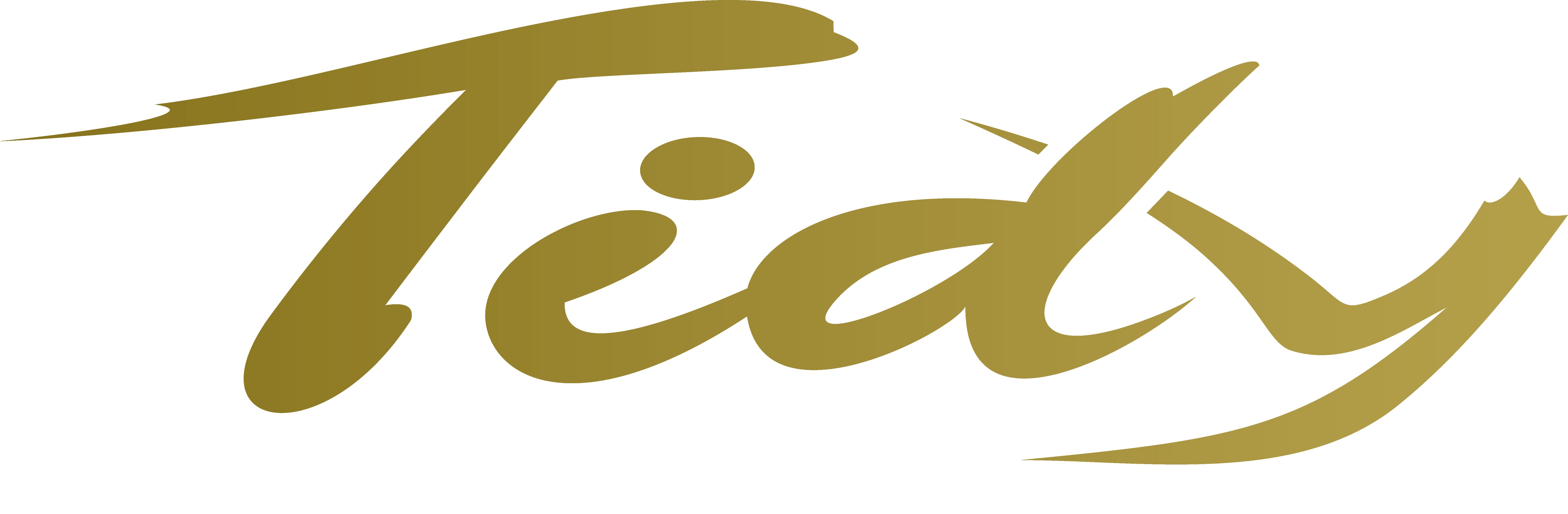 Logo da Tidy