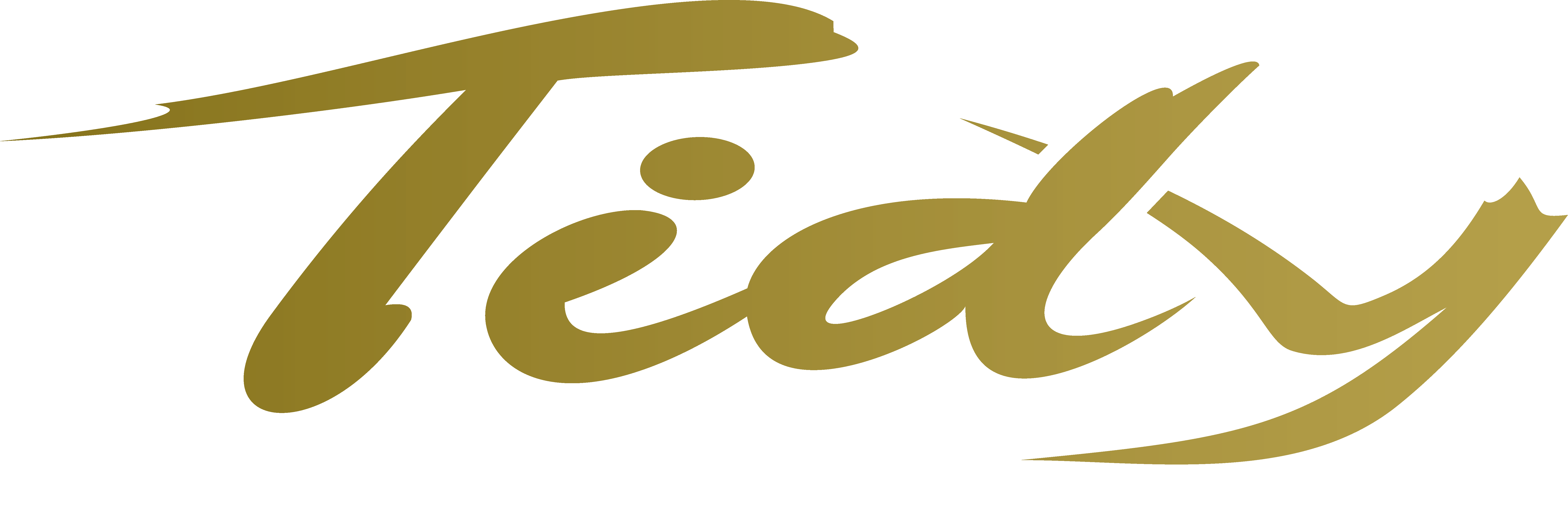 Logo Tidy