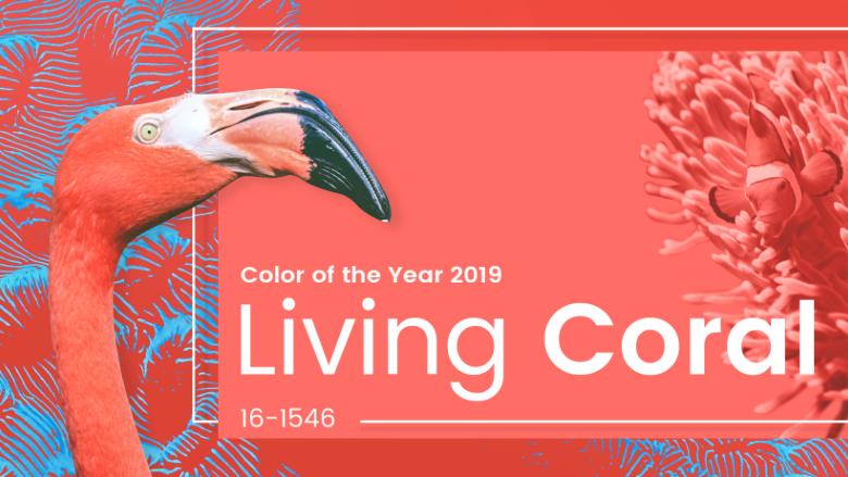 Living Coral ou Cor Coral: Experimente a tendência do ano!